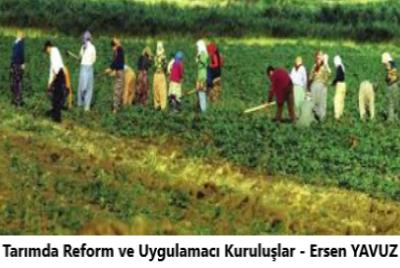 Tarımda Reform ve Uygulamacı Kuruluşlar – Ersen YAVUZ